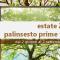 Estate 2019 – Palinsesti Prime Time (update: 17 agosto)